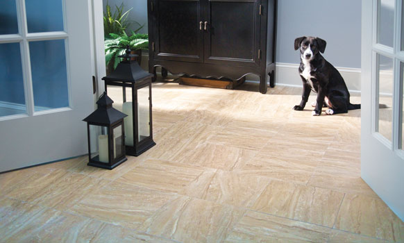 Vinyl plank is a budget-friendly wood look floor, with excellent moisture, soil, and stain resistance