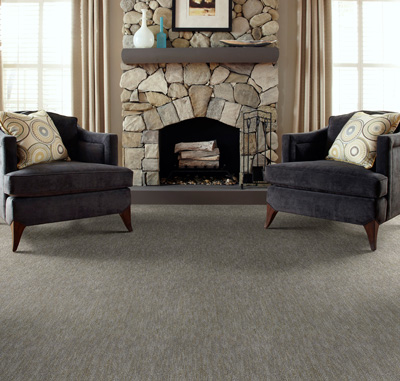 The Best Living Room Carpet & Flooring Options | Empire Today