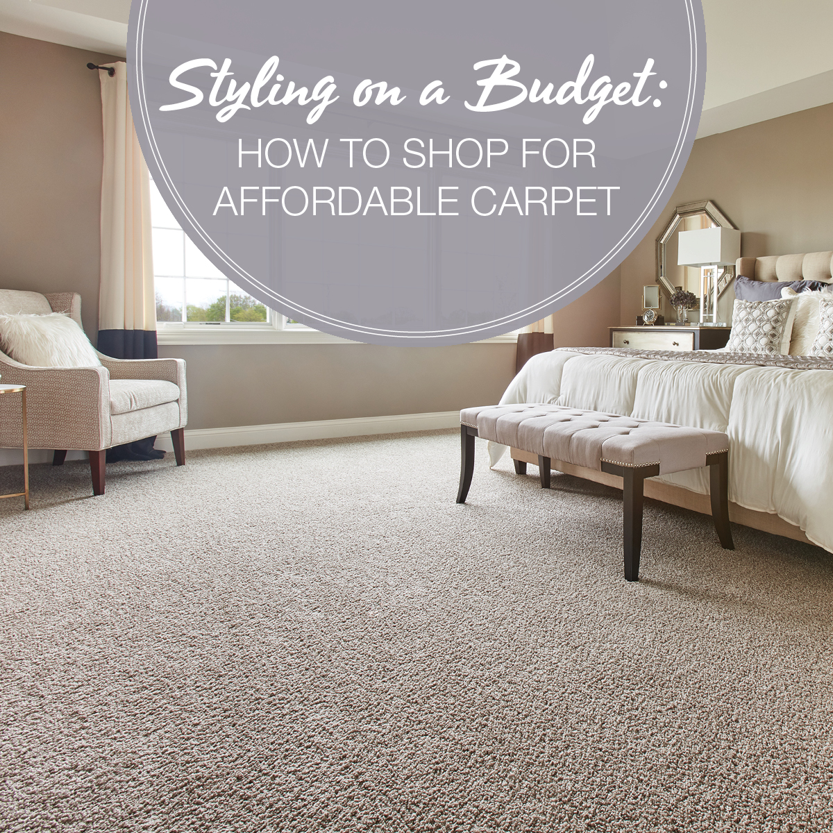 how to shop for affordable carpet