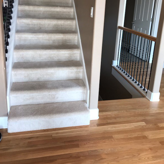 modern laminate flooring and plush carpet stairs