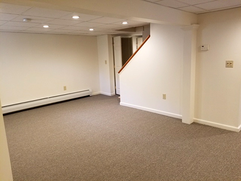 commercial carpet in a basement