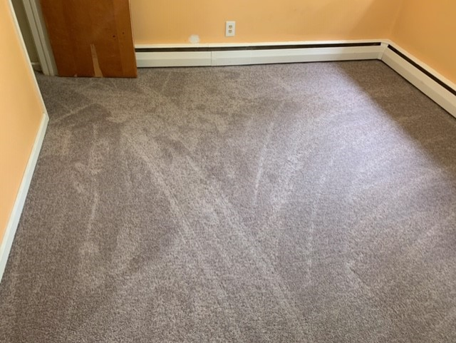 After: plush carpet in the bedroom