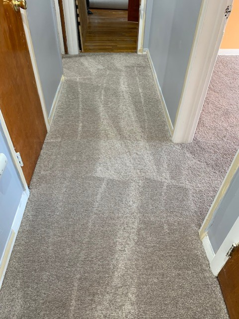 After: plush carpet in the hallway