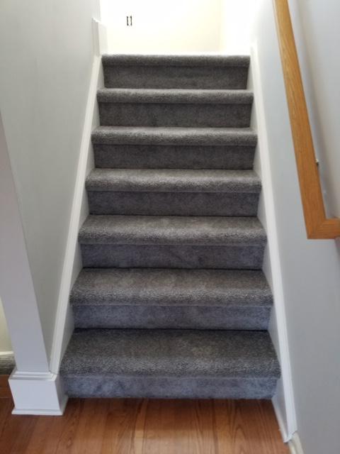 Plush Carpet Brings Up the Comfort