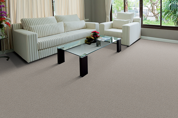 american manufactured plush carpet in the living room